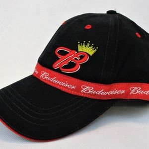 8996c0e4d35ca Bio Domes Accessories - Budweiser Dad Hat King of Beers New Adjustable Cap